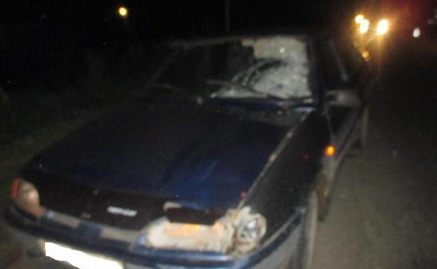 В аварии под Тулой погиб пешеход