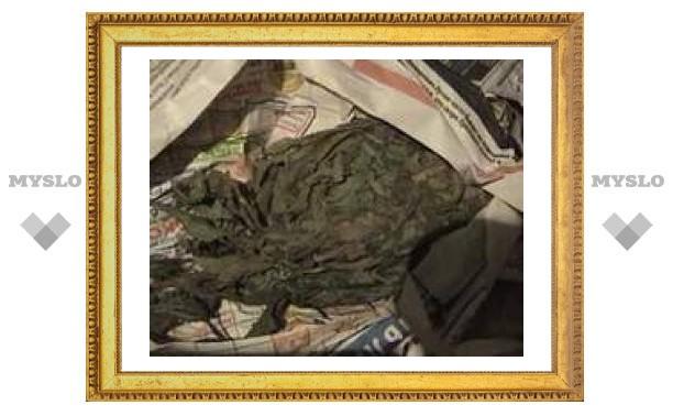 Житель Тульской области вырастил на огороде 1,5 кг конопли
