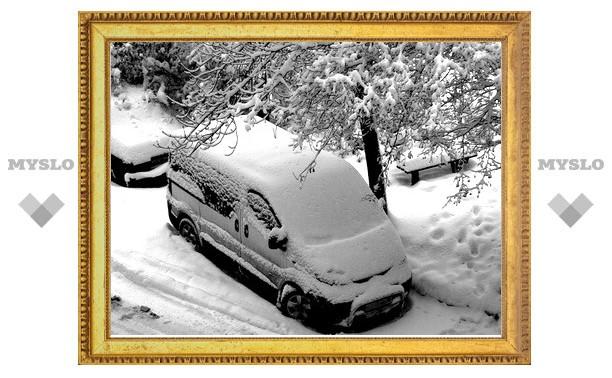В Туле выпало 10 сантиметров снега