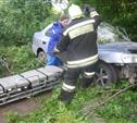 В Криволучье Hyundai влетел в дерево