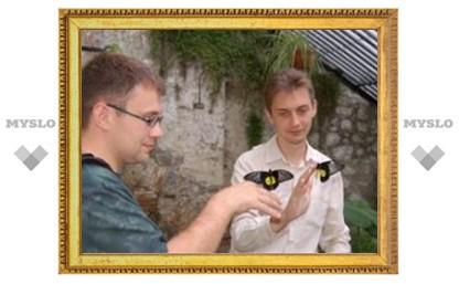 Где туляки могут сфотографировать бабочек?