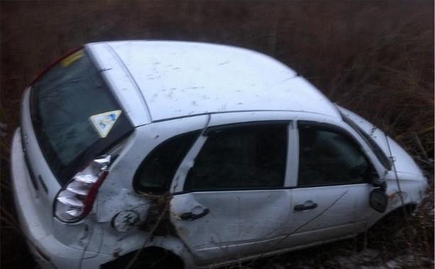 В ДТП под Щёкино пострадали два маленьких ребёнка