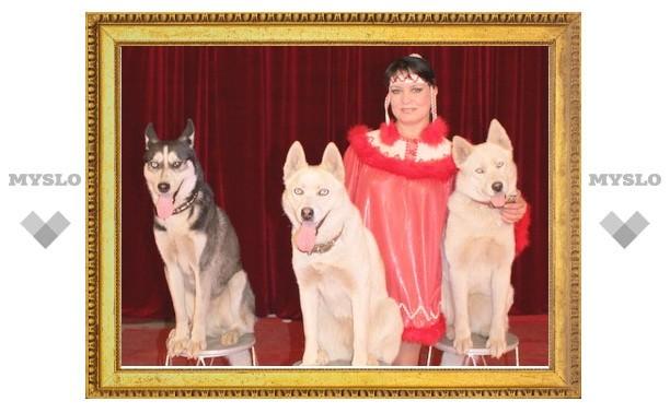 Новомосковцев и узловчан приглашают на цирковое шоу