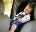 Павел Астахов предложил лишать водительских прав за оставленного в машине ребёнка