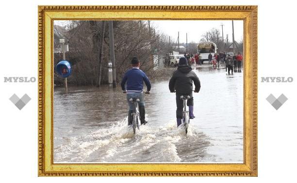 В Нижних Присадах Ленинского района все же есть затопленные паводком дома