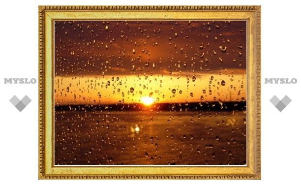 На смену солнечным дням в Тулу приходят дожди