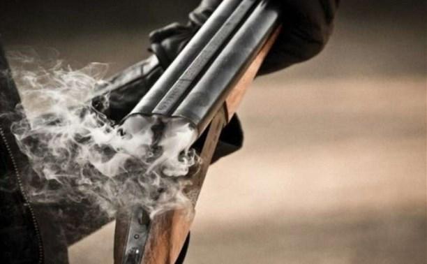 В Туле пенсионер открыл стрельбу из ружья, чтобы распугать детей