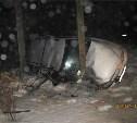 В Каменском районе мужчина разбился насмерть, влетев в ЛЭП