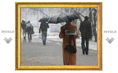 Рождественские праздники в Туле будут не по-зимнему теплыми и дождливыми