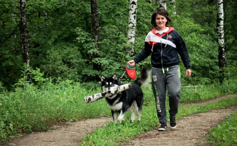 В Туле определят места установки площадок для выгула собак