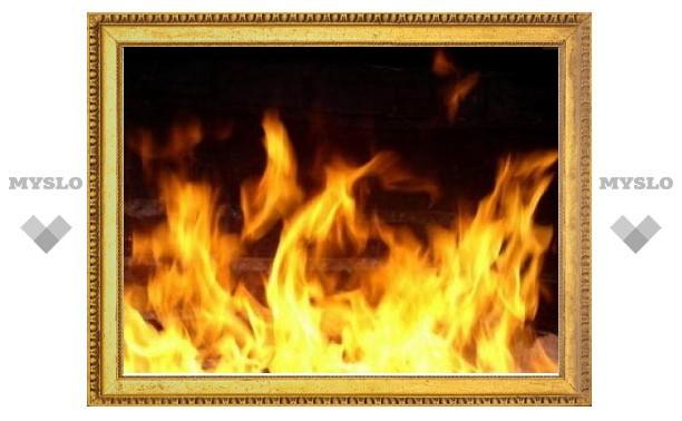 В ночь на 23 февраля в Тульской области при пожаре дома погиб мужчина