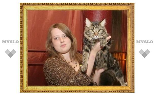 Тулякам покажут лучших кошек мира
