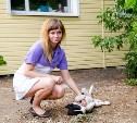 Сотрудники тульской метеостанции уже полгода пытаются спасти своих собак от догхантеров