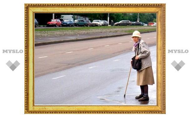 В Туле инспекторы ДПС раздают пенсионерам светоотражающие фликеры