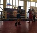 Тульские боксеры завоевали золотые медали на межрегиональных соревнованиях
