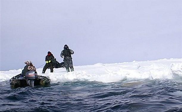 В Алексине двух рыбаков сняли с отколовшейся льдины