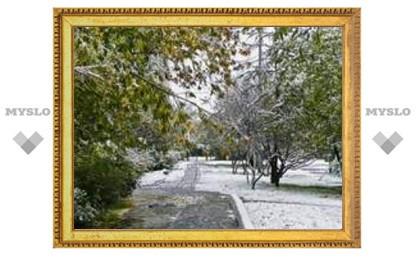 Под Тулой выпал снег