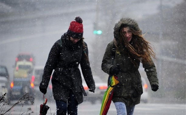 МЧС: Ветреная погода в Тульской области сохранится 1 и 2 апреля