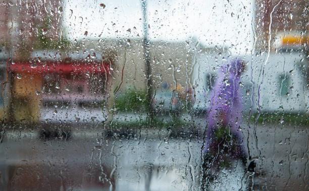 Погода в Туле 15 мая: сильный дождь с грозой и похолодание