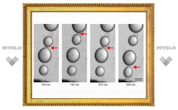 Капли воды опровергли законы физики