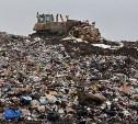 На Новомосковском шоссе появится новый полигон твёрдых бытовых отходов
