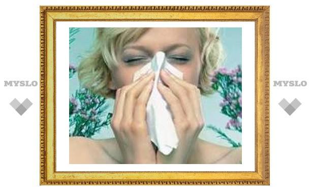 Как тулякам бороться с аллергией?