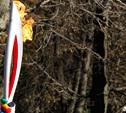 В Туле появится галерея олимпийского огня