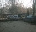 В центре Тулы дерево упало на иномарку
