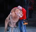 Египетский дрессировщик Хамада Кута: «Львы мне как дети!»