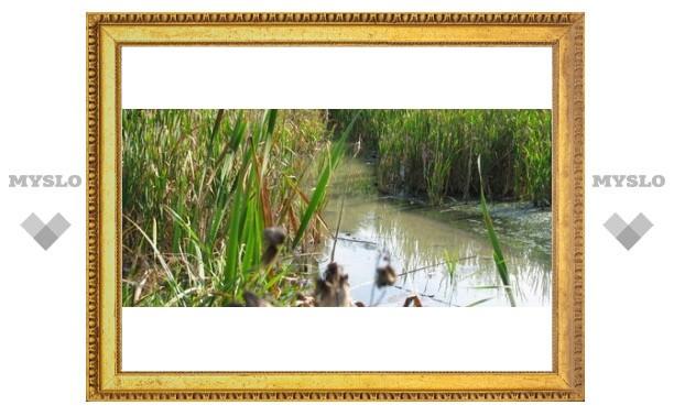 Кто загрязняет тульские реки