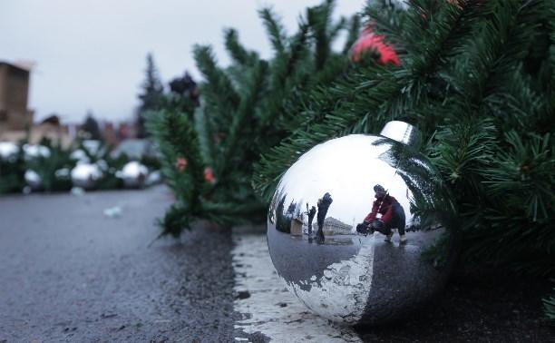 В Туле начали устанавливать новогоднюю ёлку