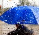 Погода в Туле 12 июля: сильный ветер и дождь с грозой