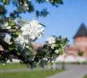 Синоптики рассказали о погоде на Европейской части России в мае