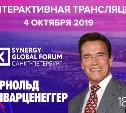 Synergy Global Forum: как тулякам увидеть Шварценеггера и послушать специалистов по бизнесу