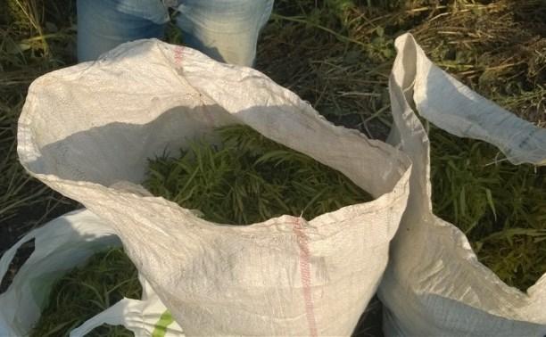 В Куркино мужчину задержали с тремя мешками конопли