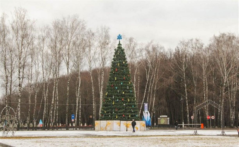 Администрация Тулы проверила уборку новогодних площадок по всей Туле