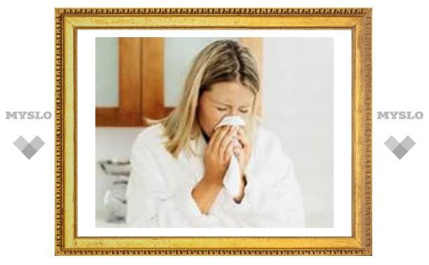 На Тулу надвигается эпидемия гриппа?