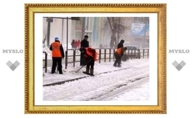В Туле начали борьбу со снегом