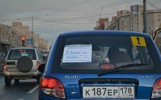 В России предложили ограничить скорость движения водителей-новичков