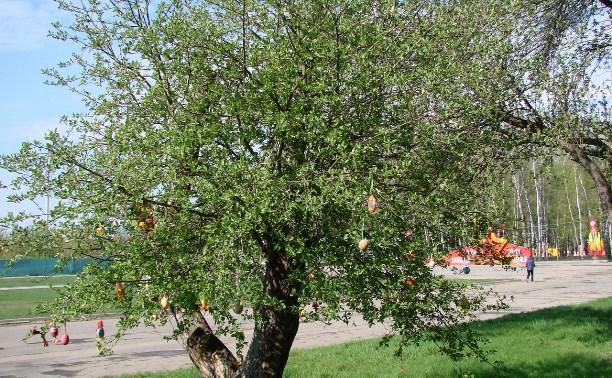 С Тульского пасхального дерева украли яйца