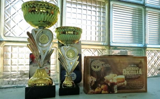 Кубок двух кремлей по дартсу остался в Туле