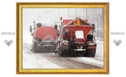 Тулу убирают от снега около ста машин спецтехники