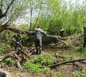 Русло Щегловского ручья расчищают от мусора