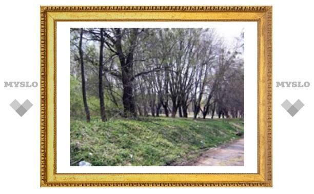 Комсомольский парк приведут в порядок