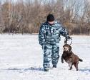Под Тулой пропавшего жителя Краснодарского края искал полицейский-кинолог с собакой