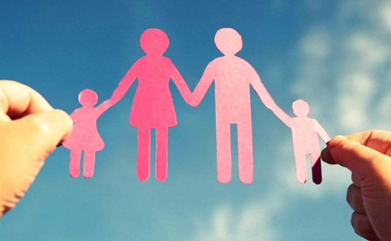Туляков проконсультируют по вопросам использования средств материнского капитала