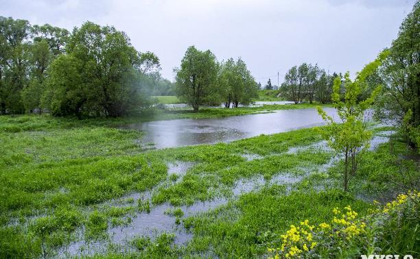 Последствия ливней: в Дедилово Тульской области до сих пор подтоплены 12 участков