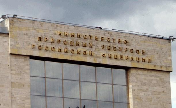 В России могут появиться природоохранные инспекторы