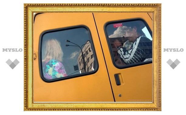Водитель маршрутки обматерил пенсионера