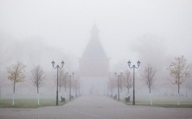 Погода в Туле 17 декабря: мокрый снег, туман и гололедица